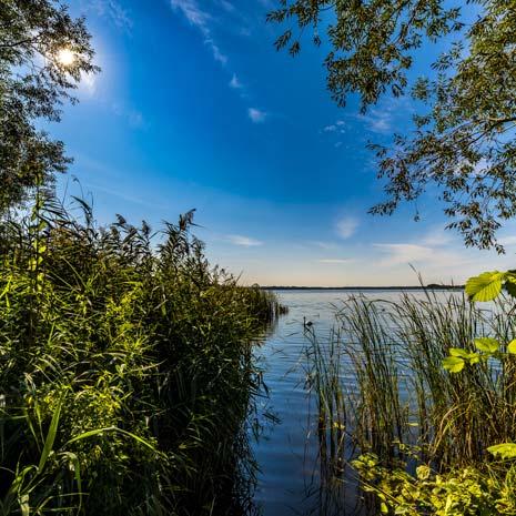 Blick auf den See in Blankensee